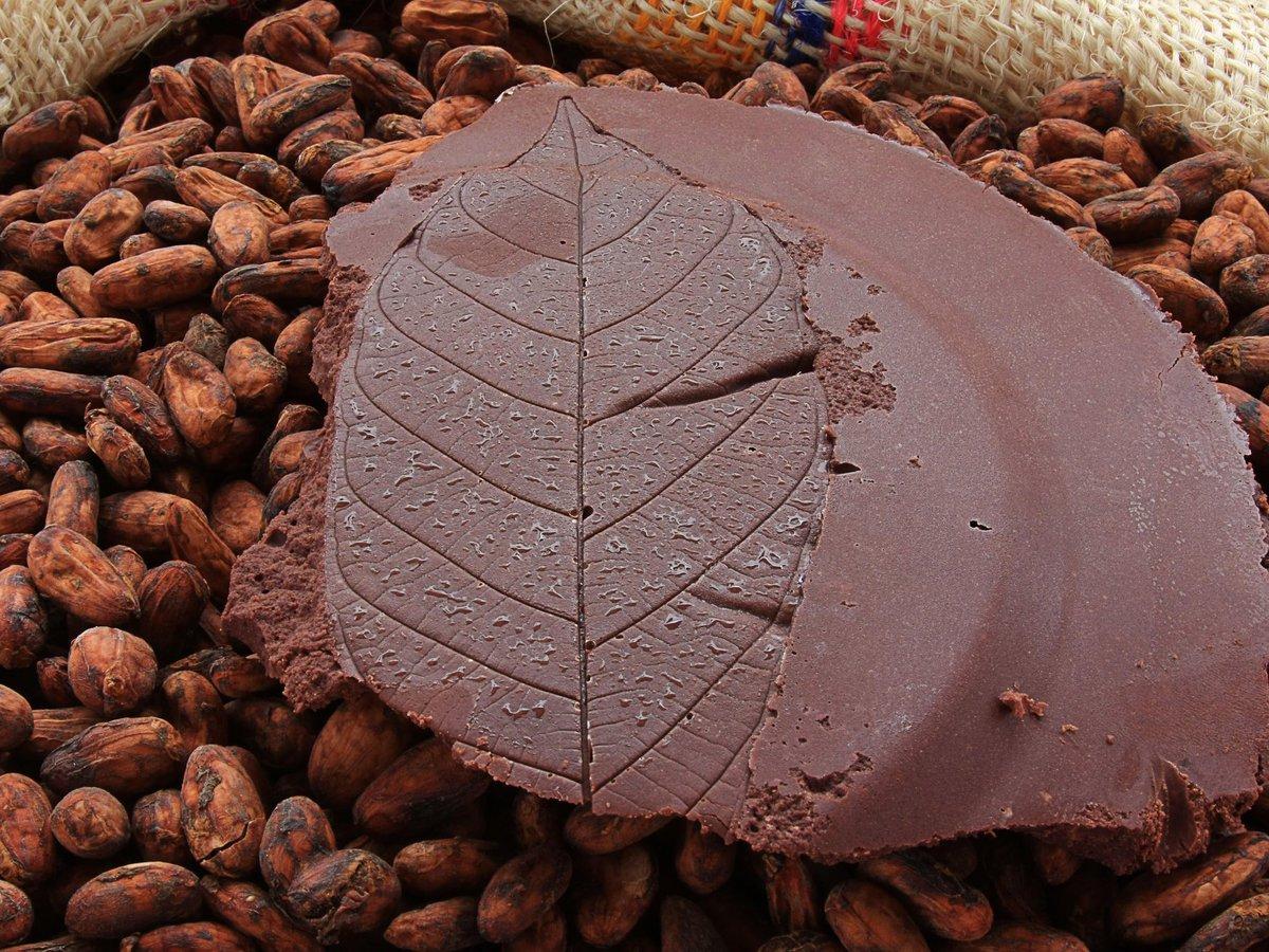 Chocolatier Bean to Bar Chocolat Beussent Lachelle