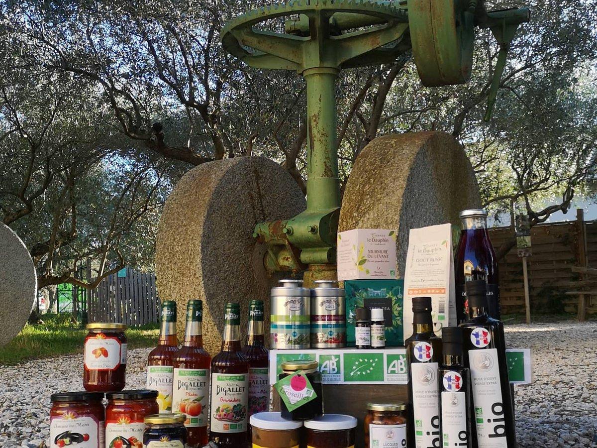 Huile d'olive en occitanie