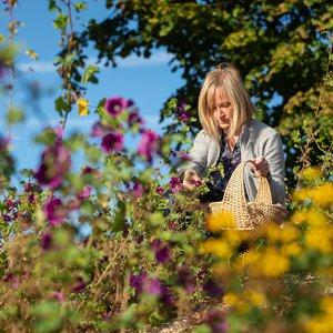 Hortus et sauvageonnes, cueillette de fleurs comestibles à Lille