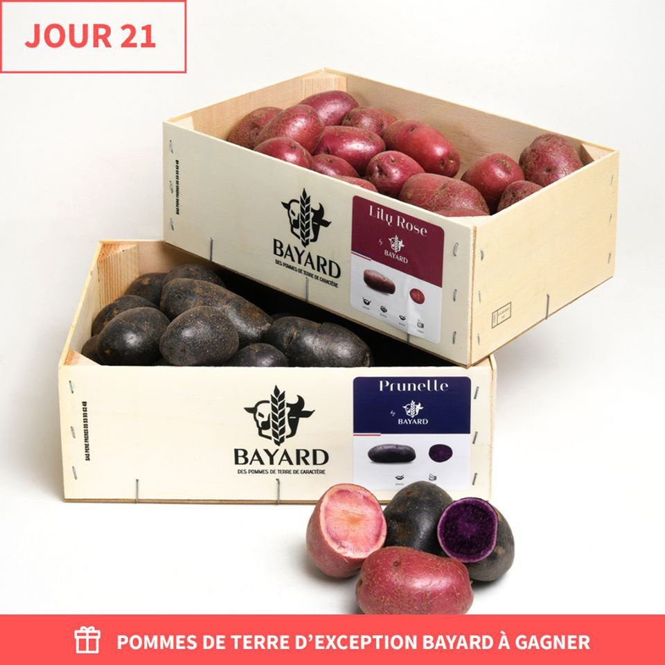 Pommes de terre Maison Bayard